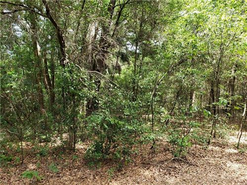 Main image for 0 OAKLANE ROAD, VALRICO, FL  33596. Photo 1 of 8
