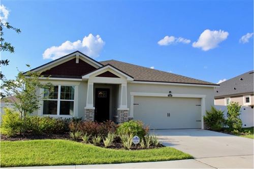 Main image for 12328 PRAIRIE VALLEY LANE, RIVERVIEW, FL  33579. Photo 1 of 20