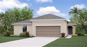 Main image for 10515 CARLOWAY HILLS DRIVE, WIMAUMA, FL  33598. Photo 1 of 6