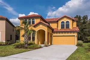 Photo of 2638 TRANQUILITY WAY, KISSIMMEE, FL 34746 (MLS # O5561959)