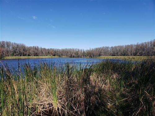 Main image for 0 COBB ROAD, LAND O LAKES,FL34638. Photo 1 of 28
