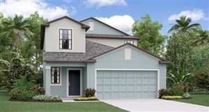 Main image for 4258 UNBRIDLED SONG DRIVE, RUSKIN,FL33573. Photo 1 of 18