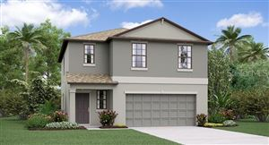 Main image for 4264 UNBRIDLED SONG DRIVE, RUSKIN,FL33573. Photo 1 of 20