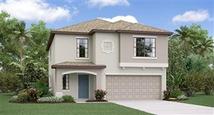 Main image for 4245 UNBRIDLED SONG DRIVE, RUSKIN,FL33573. Photo 1 of 15