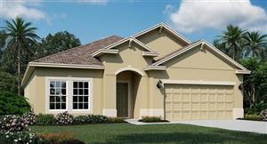 Photo of 2717 CREEKMORE COURT, KISSIMMEE, FL 34746 (MLS # T3192973)