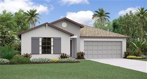 Main image for 10513 CARLOWAY HILLS DRIVE, WIMAUMA, FL  33598. Photo 1 of 17
