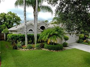 Photo of 2630 BILLINGHAM DRIVE, LAND O LAKES, FL 34639 (MLS # T3192974)