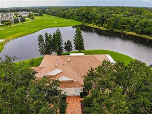 Photo of 2013 FALL RIVER COURT, SUN CITY CENTER, FL 33573 (MLS # T3192982)
