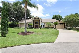 Photo of 13733 COLINA COURT, CLERMONT, FL 34711 (MLS # O5790983)