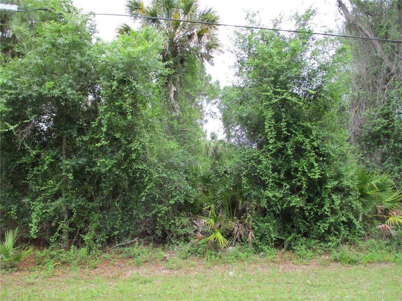 Photo of SHADY AVENUE, NORTH PORT, FL 34286 (MLS # N6114999)