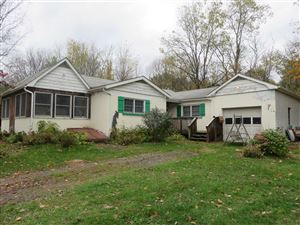 Photo of 1246 ROUTE 9G, Hyde Park, NY 12538 (MLS # 386088)