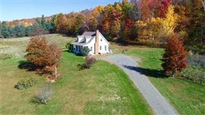 Photo of 1088 COUNTY ROUTE 7A, Copake, NY 12529 (MLS # 385107)