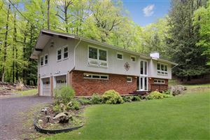 Photo of 60 LAKE PLEASANT DR, Hyde Park, NY 12580 (MLS # 381215)