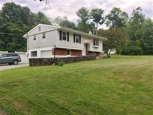 Photo of 11 N CROSS RD, Hyde Park, NY 12580 (MLS # 383272)