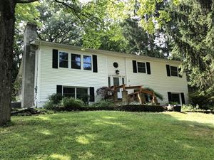 Photo of 5 ROSEDALE CT, Hyde Park, NY 12601 (MLS # 383282)