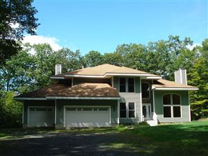 Photo of 915 PUMPKIN LN, Clinton, NY 12514 (MLS # 385341)