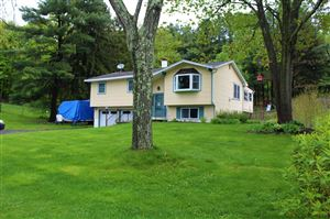 Photo of 8 BUTTONWOOD CT, Hyde Park, NY 12601 (MLS # 381375)