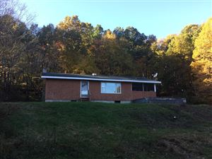 Photo of 9 COTTAGE RD, Beekman, NY 12533 (MLS # 379415)