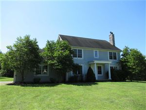 Photo of 43 MEADOW BROOK LN, Dover, NY 12594 (MLS # 384522)
