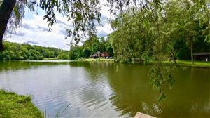 Photo of 45 BUTTONWOOD RD, Dover, NY 12522 (MLS # 385598)