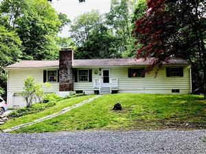 Photo of 179 ROOSEVELT RD, Hyde Park, NY 12538 (MLS # 380728)