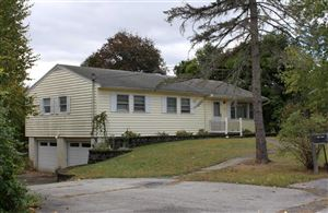 Photo of 16 LOUISE PL, Hyde Park, NY 12580 (MLS # 385747)