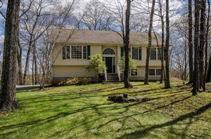 Photo of 109 WALNUT DR, Dover, NY 12564 (MLS # 380827)