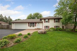 Photo of 8251 Ideal Avenue S, Cottage Grove, MN 55016 (MLS # 5278030)