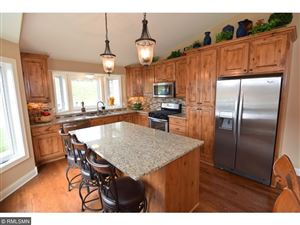 Photo of 8753 FRAIZER Street, Blaine, MN 55014 (MLS # 4874037)
