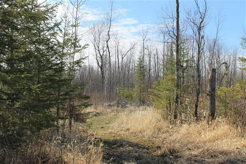 Photo of TBD Cty Rd 61, Margie, MN 56627 (MLS # 5742057)