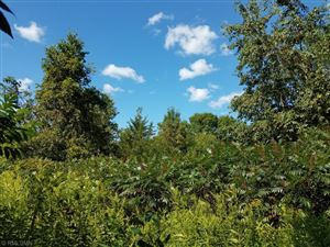 Photo of 6700 Crackleberry Trail, Lot 1, Woodbury, MN 55129 (MLS # 5279412)