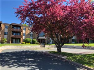 Photo of 2700 Oxford Street N #106, Roseville, MN 55113 (MLS # 5219473)