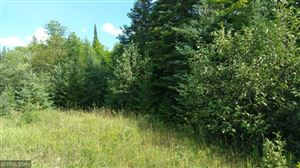Photo of Parcel B W Mud Lake Road, Lakeview Township, MN 55798 (MLS # 5280517)