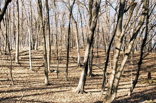 Photo of 1025 Wildhurst Trail, Orono, MN 55364 (MLS # 5690522)