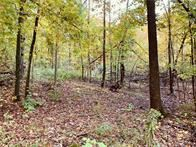 Photo of 0 30th Street, Sumner Township, WI 54728 (MLS # 5316529)