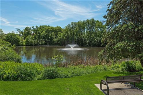 Photo of 215 Barry Avenue S #219, Wayzata, MN 55391 (MLS # 5679589)