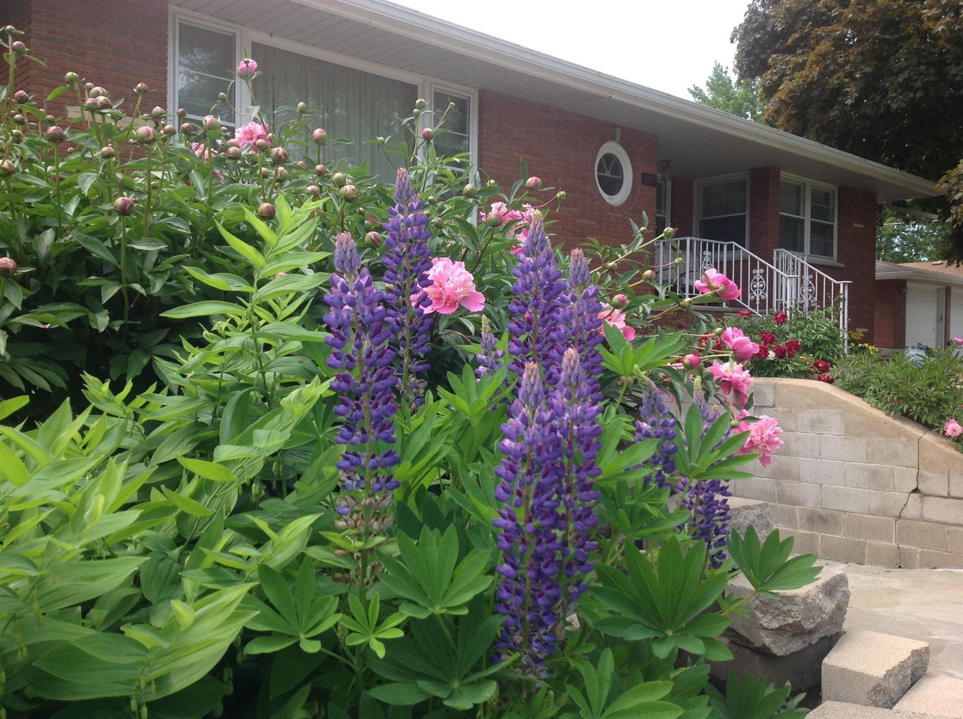 Photo of 1297 Van Dyke Street, Saint Paul, MN 55119 (MLS # 6103722)