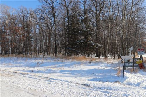 Photo of 32272 165th Avenue, Eagle Bend, MN 56446 (MLS # 5323844)