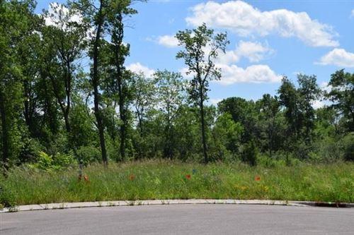 Photo of 6402 Black Berry Court, Lino Lakes, MN 55014 (MLS # 5615877)