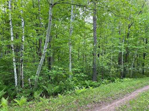 Photo of L7 B2 Birch Trail, Garrison, MN 56450 (MLS # 6006888)