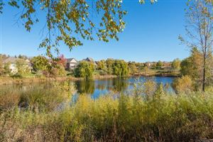Photo of 11273 Stonemill Farms Curve, Woodbury, MN 55129 (MLS # 5014933)