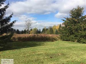 Photo of 00 River Rd., East China, MI 48054 (MLS # 31360088)