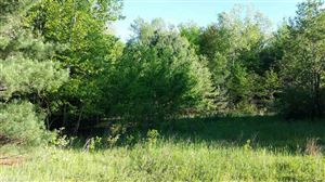 Photo of 0 W Barnes Lake Road, Columbiaville, MI 48421 (MLS # 31371098)