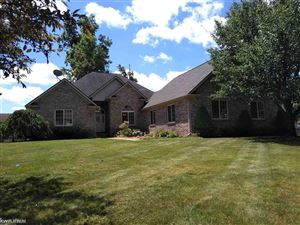 Photo of 4841 Lorwood, Smiths Creek, MI 48074 (MLS # 31385112)