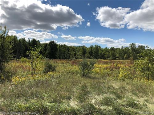 Photo of PARCEL 3/addres LAPEER RD., (OLD M-21)KENOCKEE TOWNSHIP, Avoca, MI 48006- (MLS # 40104121)
