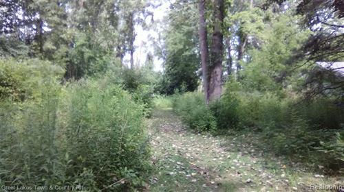 Photo of Lot 341 BIRCH DR, Silverwood, MI 48760- (MLS # 40104164)