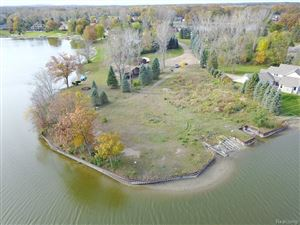 Photo of 3039 WYNNS MILL POINT, Metamora, MI 48455- (MLS # 21522242)