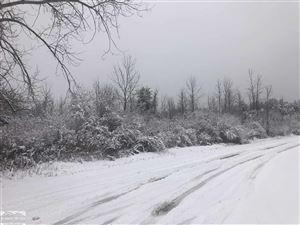 Photo of VL State, Burtchville, MI 48059 (MLS # 31400247)