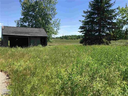 Photo of 8768 Lapeer, Mayville, MI 48744 (MLS # 50016306)