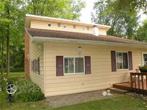 Photo of 7344 Birchwood, Lexington, MI 48450 (MLS # 31394318)